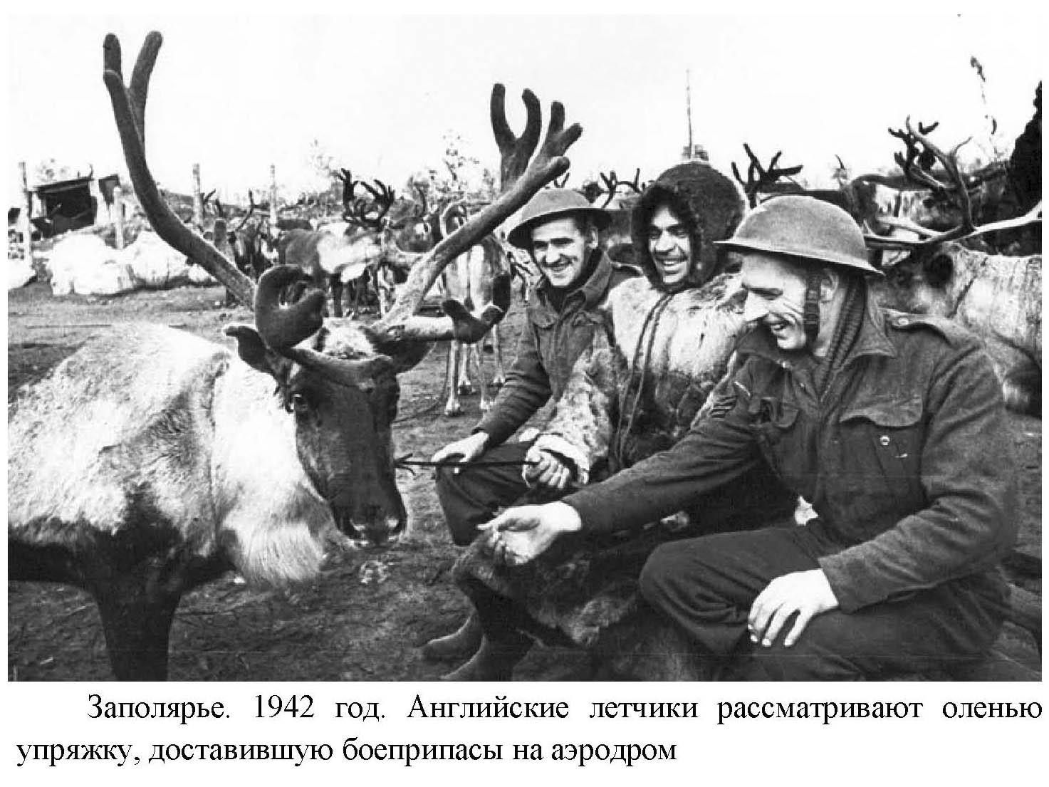 Белом война 1945 порно бригаду прокуратуры
